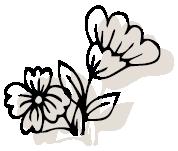 icone event monsieur fleur black