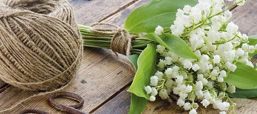 Muguet du premier mai- bouquet-ficelle