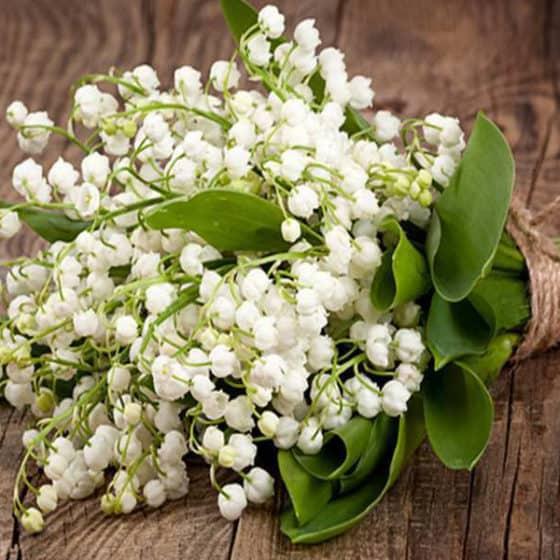Muguet-du-premier-mai-arrangement-floral